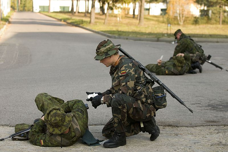 Lithuania Lithuanian Army ranks military combat field uniforms ...