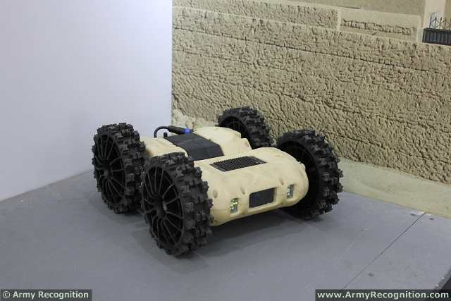 The NERVA®LG is a small unmanned ground vehicle (UGV) designed and manufactured by the Company Nexter Robotics. This UGV is able to perform reconnaissance and counter-IED (Improvised Explosive Devices) missions for route clearance.