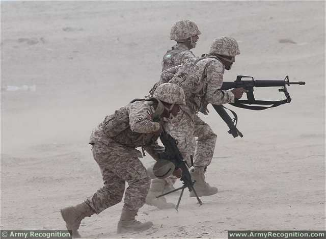 united arab emirates plan to introduce military service for young men to increase military potential