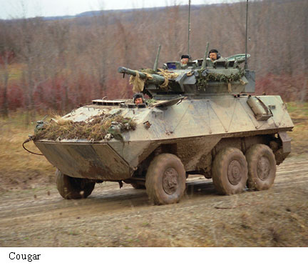 cougar piranha 1 wheeled armoured vehicle canada canadian army pictures technical data sheet fr. Black Bedroom Furniture Sets. Home Design Ideas